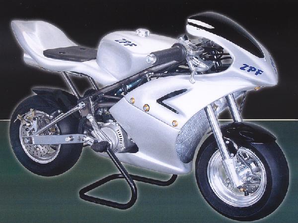 minimoto ZPF 206 junior gara estero